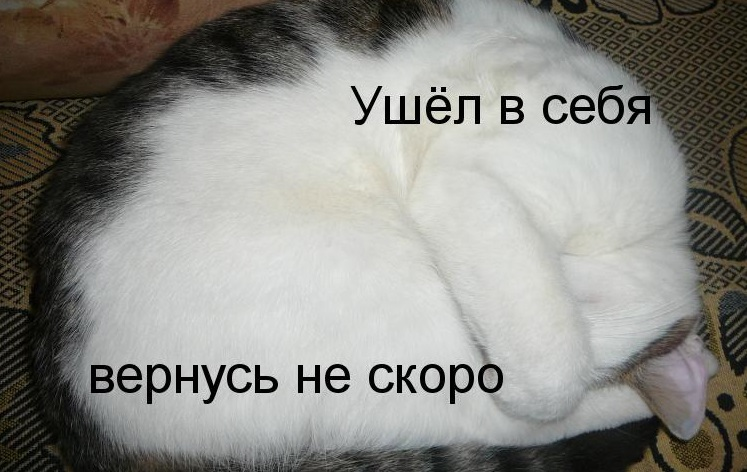 ushel-v-sebja