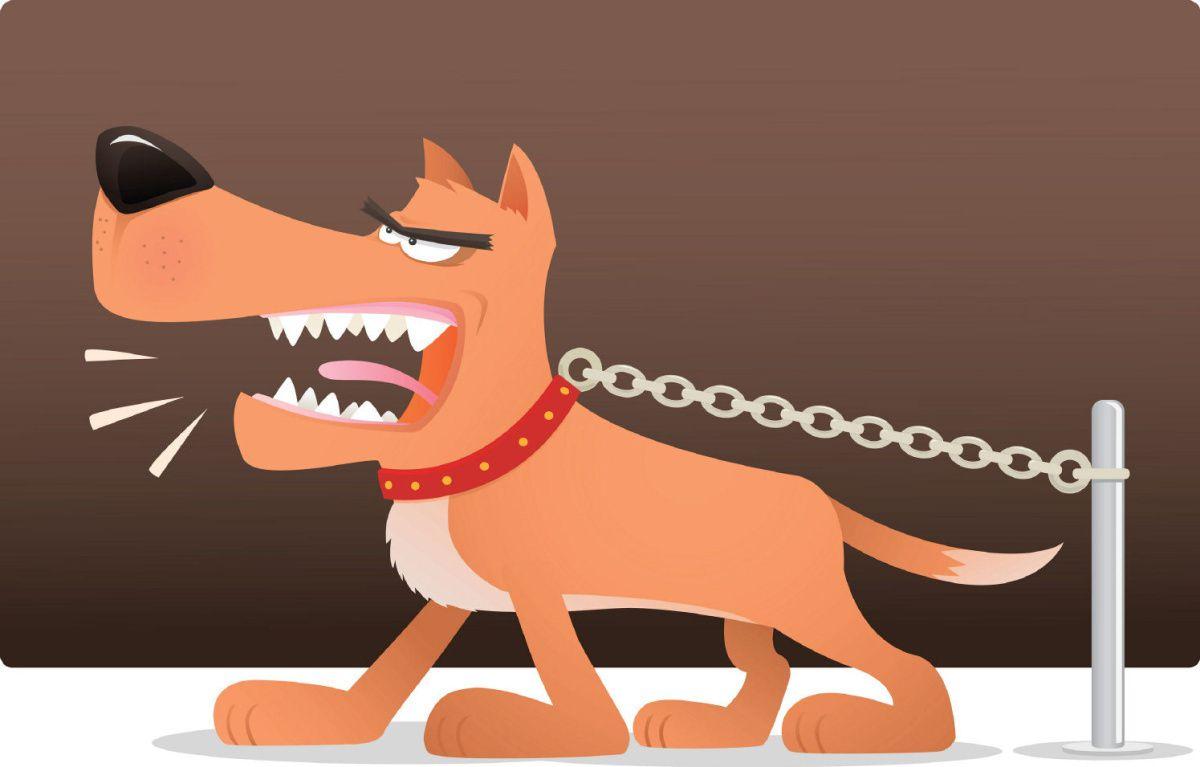 bitingdog